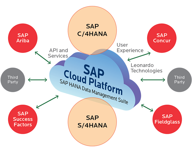 SAP Intelligent Enterprise - Transforming To Insight Driven Organization